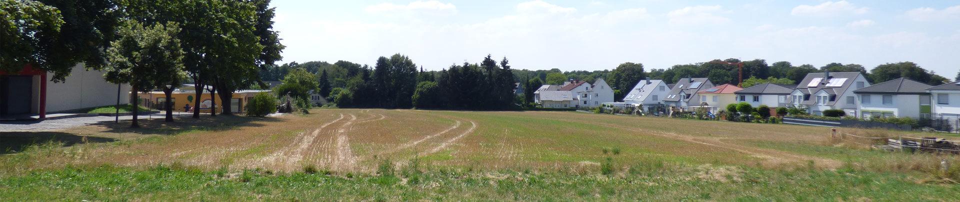 Sommerkamp-Feld